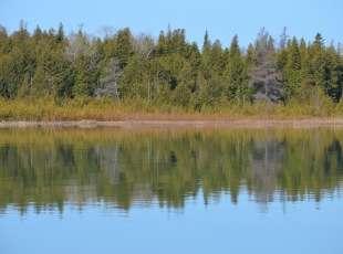 A Naturalists' Paradise! Fishing Islands, South Bruce Peninsula